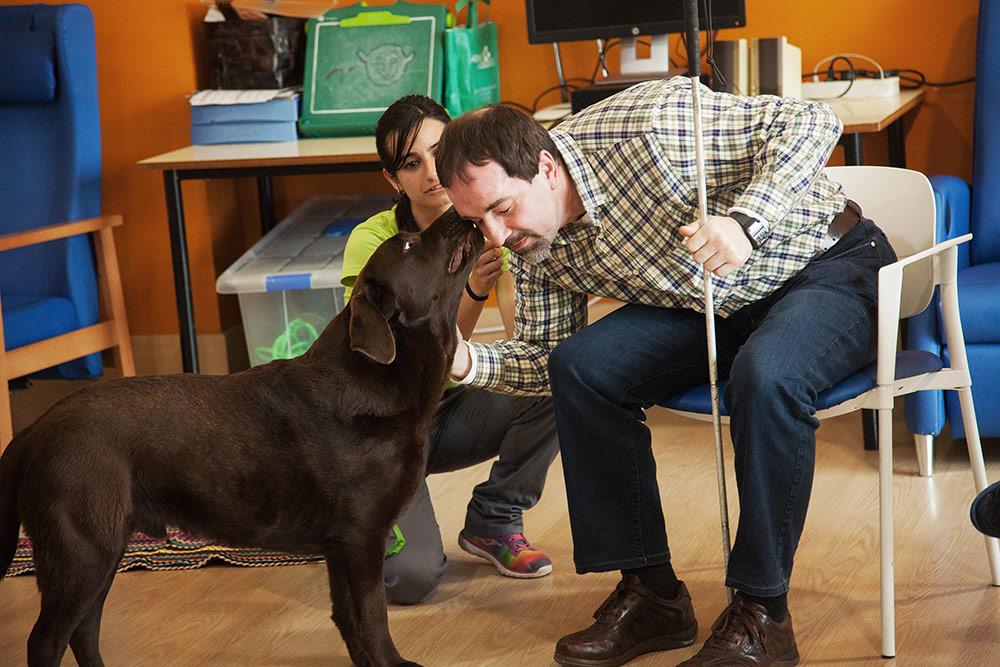 terapia-canina-2