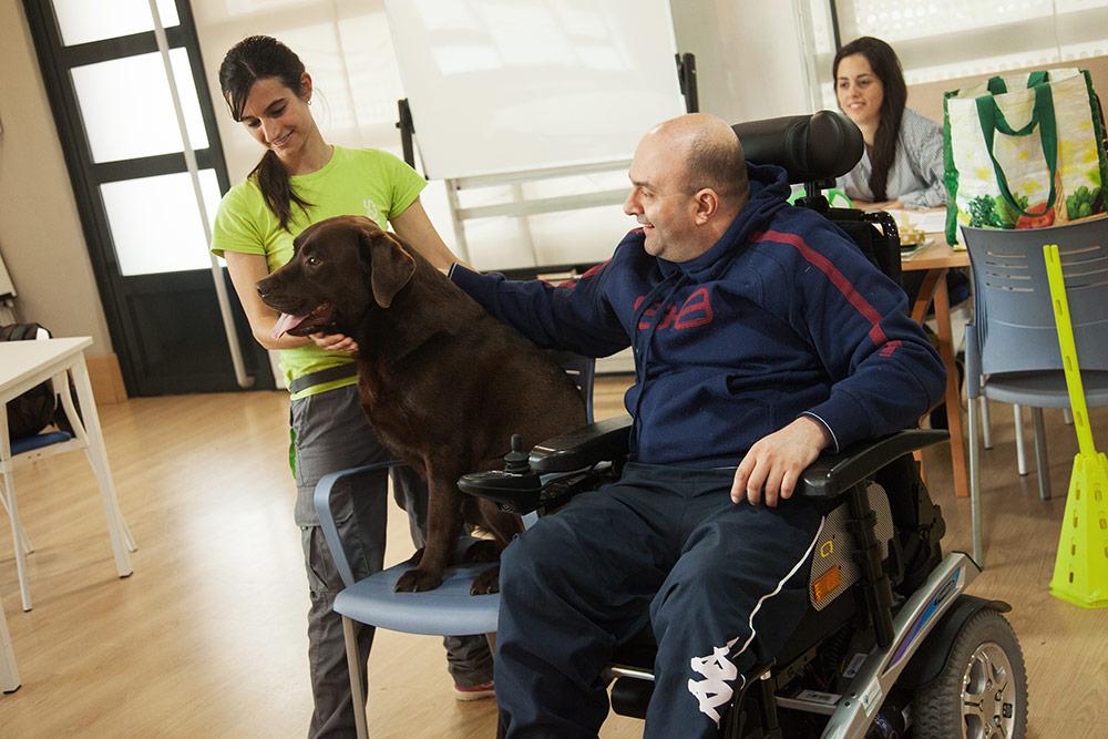 terapia-canina-3