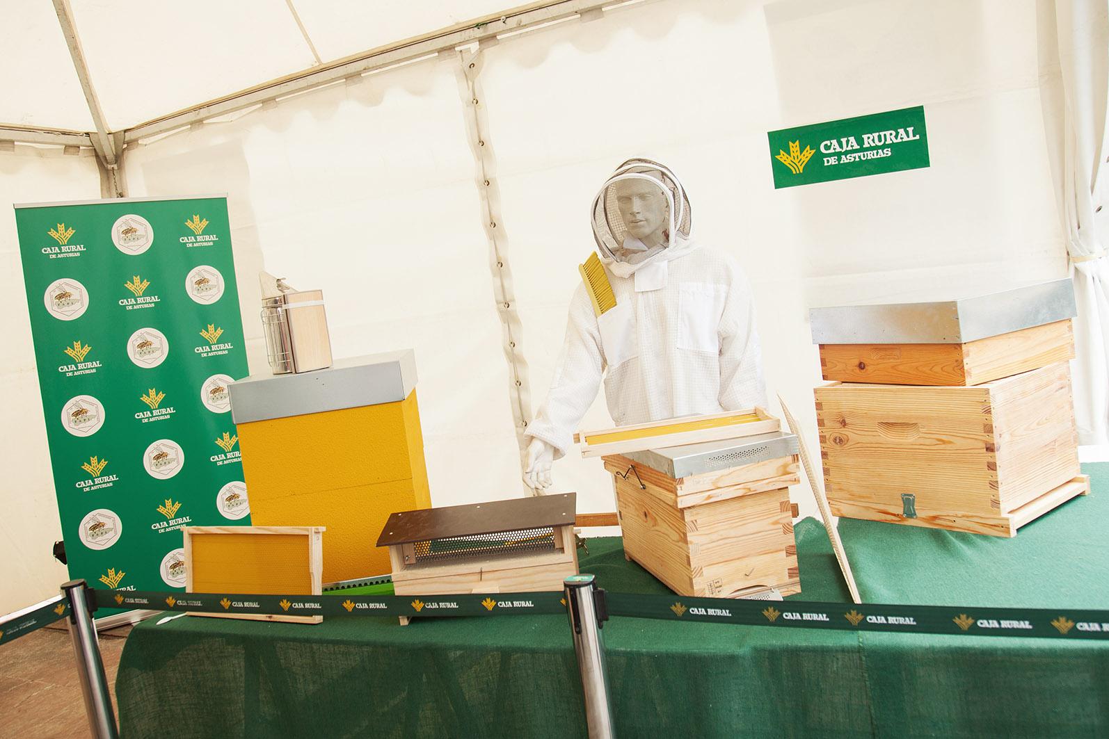 apicultura_4